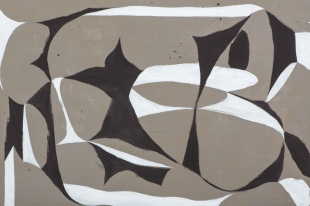 Ulrich Reimkasten_Dynamisches Gebilde_2011_160 x 240 cm